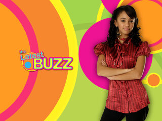 Amanda-the-latest-buzz-7844246-1280-960