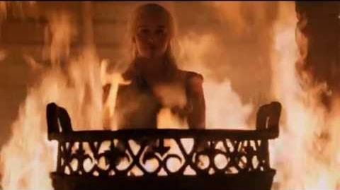 Game of Thrones 6x04 Daenerys burned Khal Moro and the other Khals-1463415646
