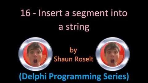 Delphi Programming Series 16 - Insert a segment into a string