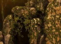 Doom of the Hills Cave