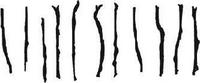 Eleven sticks