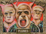 Plume (tribe)