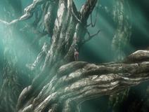 Omnicient tree