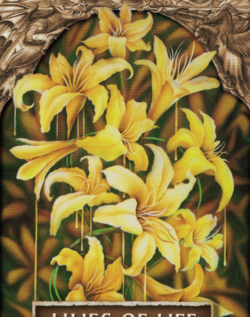 Lilies of life mcbride cropped