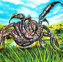 Spider250