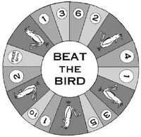 Beat the bird