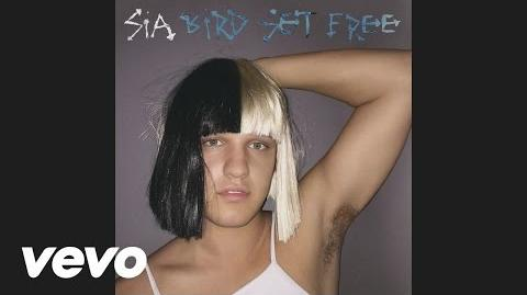 Sia - Bird Set Free (Audio)
