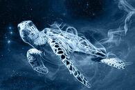 Turtle patronus