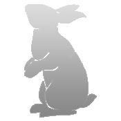 File:Ficon whiterabbit.png