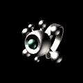 Regenerator's Ring