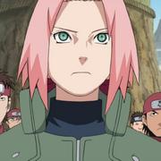 Sakura256