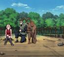 Episode: Die Jinchu-Kraft, die jeder will!