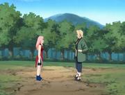 SakuraTraining