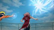 Sakura zwischen S und N