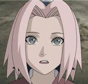 SakuraGenin02