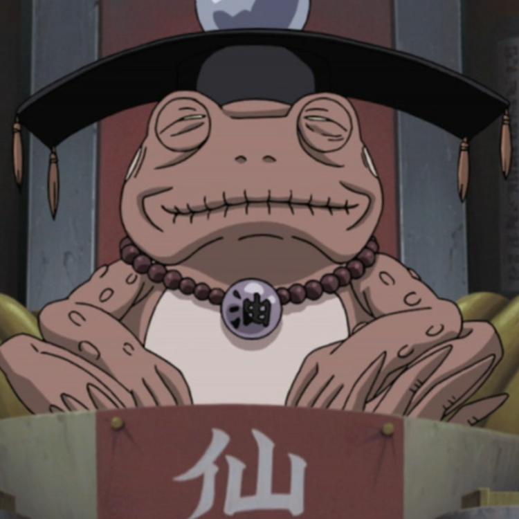 Gamamaru | Narutopedia | FANDOM powered by Wikia