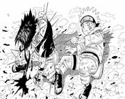 Sasuke beschützt Naruto