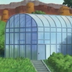 Wind-greenhouse