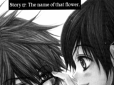 Chapter Seventeen: The Name of That Flower