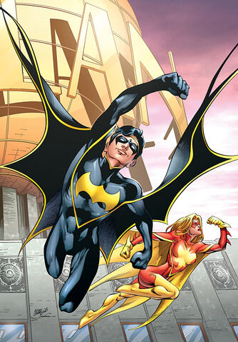File:Nightwing and Flamebird.jpg