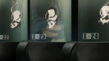 Baby X-23