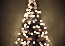 Christmas tree lights II