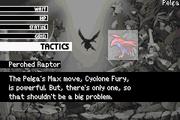 Perched Raptor