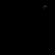 Chaton - American curl 2