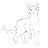 Aspirant - Aegan short
