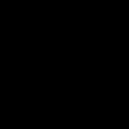 Apprenti - Oriental Shorthair 1