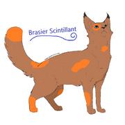 Brasier scintillant22