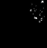 Aspirant - British Shorthair 1
