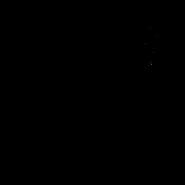 Kittypet - Oriental Shorthair 1 (sans collier)
