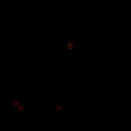Guerrier - Main coon 2
