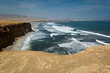 640px-Paracas National Reserve, Ica, Peru-3April2011