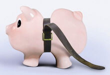 Money inhibtor