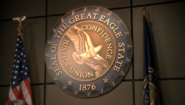 Eagle State Seal and Flag