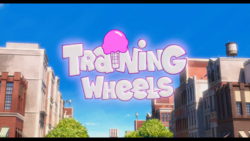 Trainingwheelsdm2title