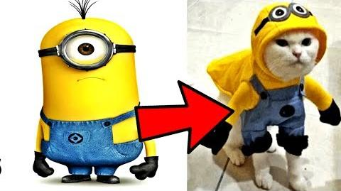 Despicable Me 3 Animation Movie In Real Life 2017