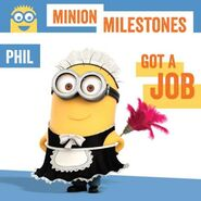 Phil maid