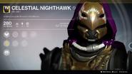 Celestial Nighthawk (Year 2) UI