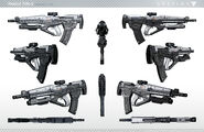Destiny Assault Rifle 2