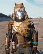 Wolfswood cloak cropped