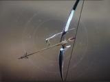 Wish-Ender