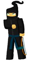 Ninjatwist