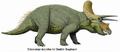 Triceratops horridus by Dmitry Bogdanov.png