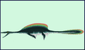 Finned Plesiosaur by Taylor Anderson.png