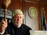 Juiz Gallo