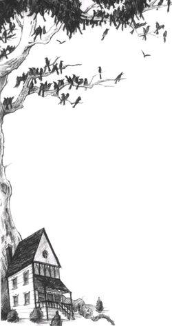 Árvore do Nunca Mais e casa de Hector