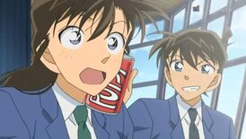 Shinichi-and-Ran-shinichi-and-ran-13943992-850-480